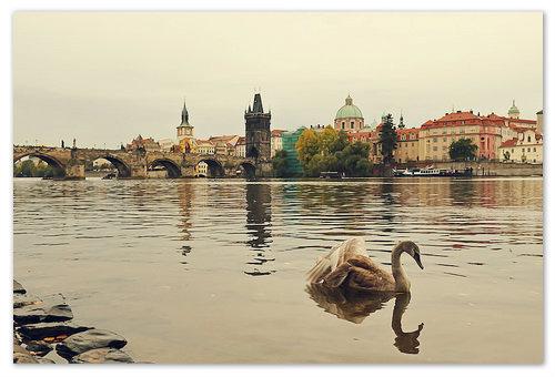 Прага и Чехия в октябре 2019: погода, туры, отдых, отзывы туристов. Что посмотреть в Праге в октябре