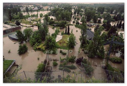 Катастрофа пражского зоопарка в 2002 году.