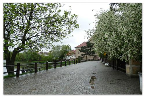 Парк замка Тельч.