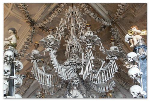 Наука о костях — остеология. А это остеологическая люстра.