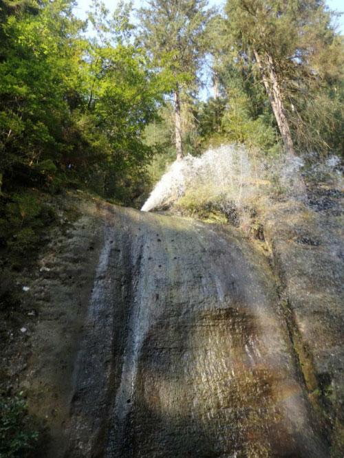 Сосны и водопад.